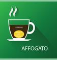 type of coffee affogato coffee vector image vector image