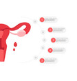 woman reproductive health with uterus vector image