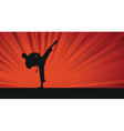 karate background vector image vector image