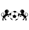 lions and soccer ball vector image vector image