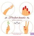 manicure and skincare concept set of hands vector image