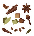 natural organic spices icons vector image vector image