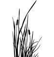 Silhouette reed bush