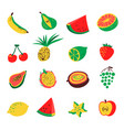 tropical exotic fruits set cute fresh organic vector image