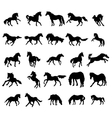 Horses silhouettes set vector image