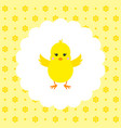 chick flat vector image