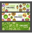 Eco Shop Banner Horizontal Set vector image