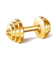 Golden realistic dumbbell vector image