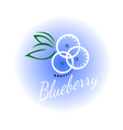 logo blueberry isolated vector image vector image