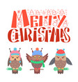 merry christmas bullfinch set sitting on branch vector image vector image