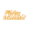 muchas felicidades translated from spanish vector image vector image