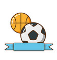 sports balls isolated icon vector image vector image