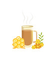 hot herbal tea in a transparent cup with honey vector image