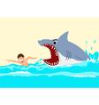 Shark Attacks vector image