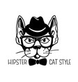 cat hipster style with vintage hat and glasses vector image