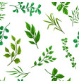 seamless pattern sprigs with green leaves vector image vector image
