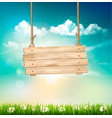 spring nature background with green grass and vector image vector image