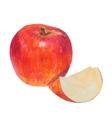 Watercolor colored pencils apple vector image