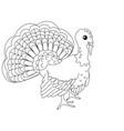 children coloring farm bird turkey vector image vector image