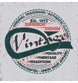 Denim typogrphy print vector image vector image