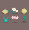 flowers and lemons icons vector image vector image