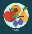 Set of fresh fruit for your design vector image