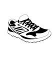 sneakers in vector image vector image