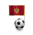 Soccer Balls or Footballs with flag of Montenegro vector image vector image
