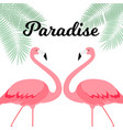 summer creative poster with pink flamingo card vector image vector image