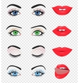 Beauty female eye and lip vector image vector image