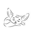 black an white sleeping cartoon fennec fox vector image vector image