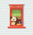 dog on the window winterchristmas card vector image vector image