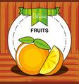 fresh orange fruit isolated icon vector image vector image