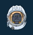 gorilla head in spaceman helmet hand drawn t vector image vector image