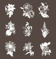 hand drawn flower design elements vector image vector image