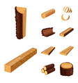isolated object of signboard and wood sign set of vector image vector image