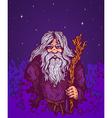 old man night vector image