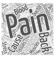 Cholecystitis and Back Pain Word Cloud Concept vector image vector image