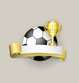 flat cartoon football ball banner isolated vector image