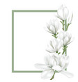 frame with white flower vector image vector image