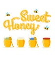honey jars vector image vector image