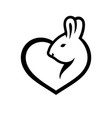 rabbit love sign vector image
