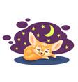 sleeping cartoon fennec fox against starry night vector image