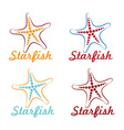 starfish design template vector image