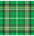 Tartan cloth pattern vector image