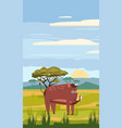 wild boar cute cartoon style in background vector image vector image