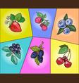 berries set pop art comic vector image