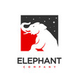 elephant logo design template vector image vector image