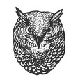 owl bird head animal engraving vector image