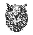 owl bird head animal engraving vector image vector image